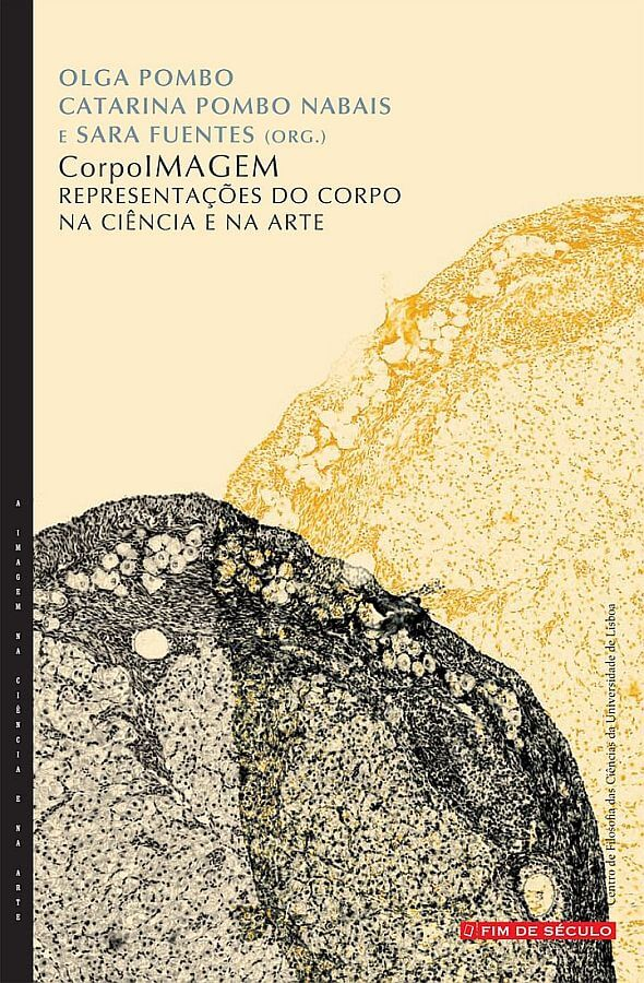 Participation of Dr. Dalila Honorato in new book on Image in Science and Art